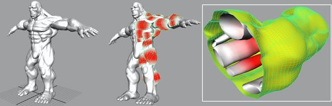 The program analyses a character's body shape and works out the skeleton and muscles that fit inside