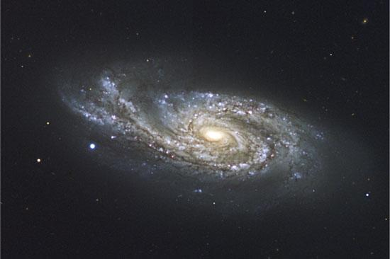 The spiral arm on the left side of galaxy NGC 908 has been bent upwards by a near-collision with a passing galaxy