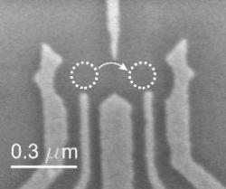 An electron microscope shows the structure of the circuit