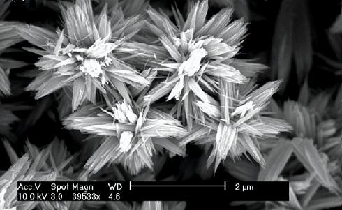 Besides looking good under a scanning electron microscope, the nanoflowers detect ethanol through changes in their electrical resistance