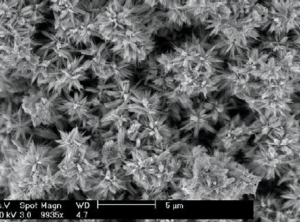 'Nano-flowers' show promise for alcohol detection