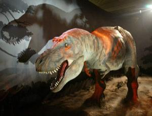 Animated model of Tyrannosaurus Rex at the Natural History Museum, London