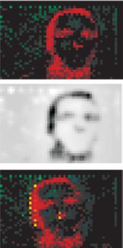 The top image shows the raw output of the retina chip, the middle one a picture processed from it and the third shows how a moving face would appear