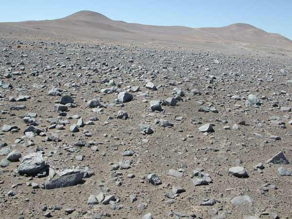 The trace amount of organic matter in soil from the Atacama desert in Chile did not decompose into smaller molecules when heated to the temperatures used in Viking's GCMS experiment