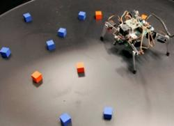 This robot's leg movements have a crucial effect on the information received by its eyes