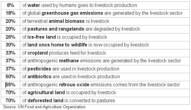 Livestock facts and figures (Source: UN Food and Agriculture Organization)