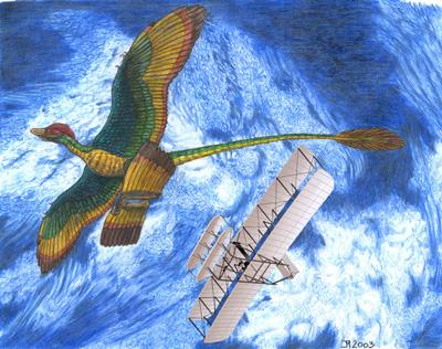 Microraptor gui from China compared with the Wright 1903 Flyer