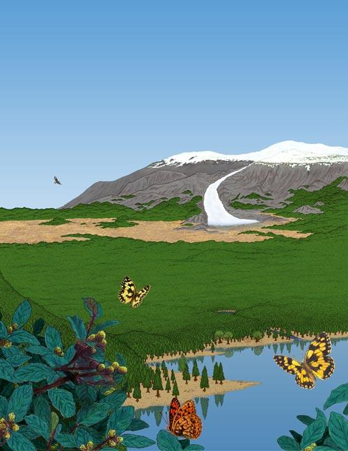 Researchers say southern Greenland was covered in conifer forest over 450,000 years ago