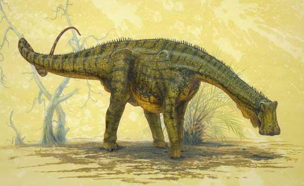 The dinosaur's jaw was flat, allowing it to crop plants