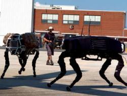 'Robot arms race' underway, expert warns