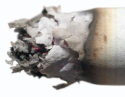 Big brains payrolled by Big Tobacco