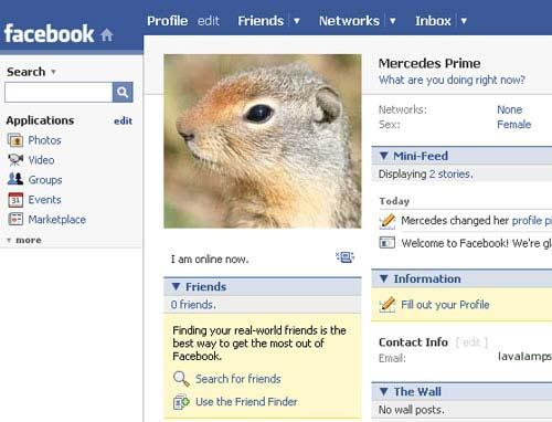 'Squirrel Facebook' shows three degrees of separation