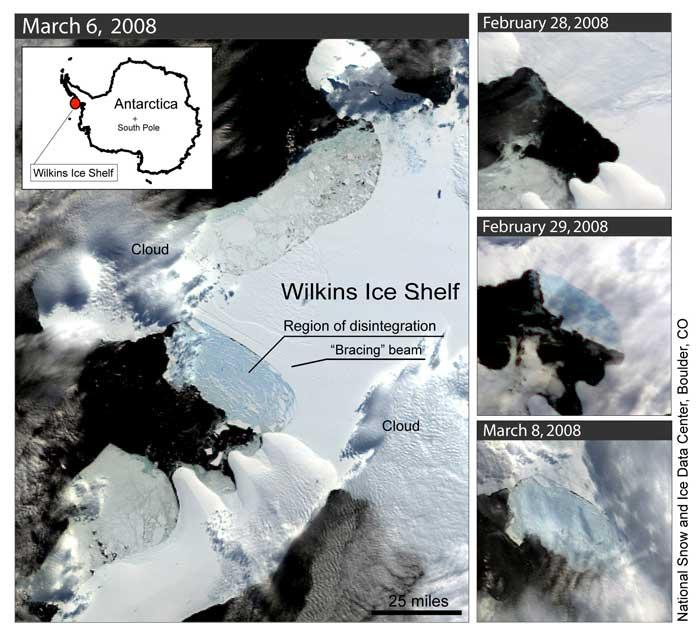 A narrow strip of ice is now bracing the remainder of the Wilkins ice sheet