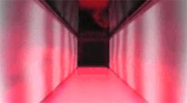 The patterns on this tunnel's walls can change in response to the fly inside's movement, tricking it into responding to a virtual reality