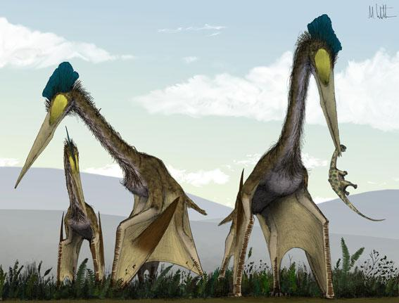 A group of Quetzalcoatlus, another type of giant azhdarchid, strolling around a fern prairie eating baby dinosaurs for lunch.
