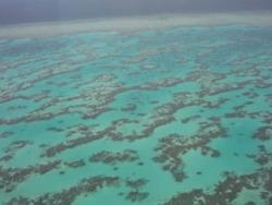 Quirk of sea air provides video link to protected reef