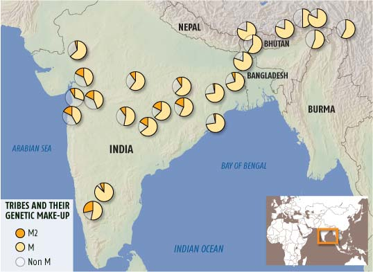 Ancient genetic imprint unites the tribes of India