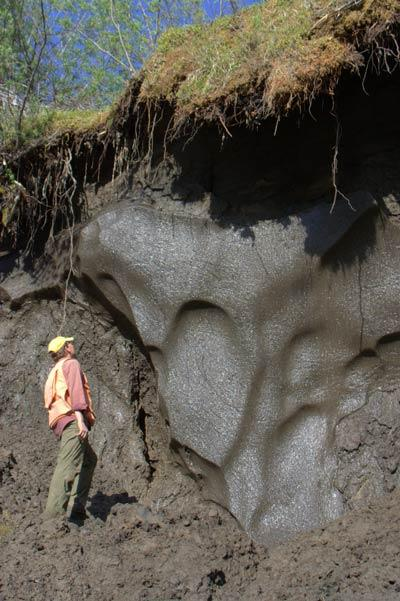 Ice wedges like this one accumulate over thousands of years