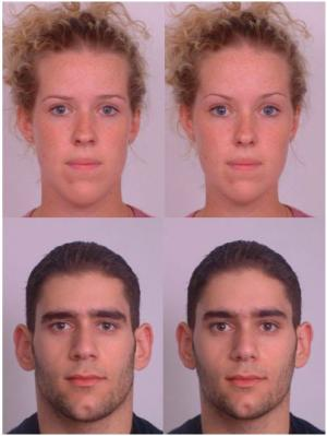 Examples of the manipulated faces used in the experiment. The images on the left are masculinised, the ones on the right are feminised