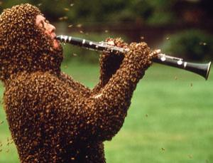 Beekeepers' immune systems quickly develop tolerance to bee stings