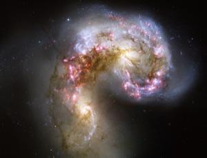 The Antennae galaxies (NGC 4038 and 4039), a merging pair of galaxies, as captured by the Hubble Space Telescope