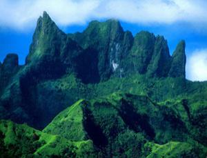Tahiti is the home of the finest vanilla, but Tahitian vanilla has long been an enigma