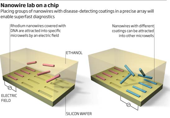 Nanowire lab on a chip