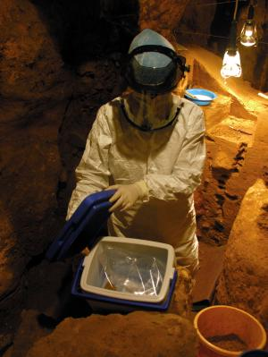 Excavation of Neanderthal remains from a cave in El Sidron, Spain