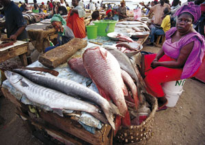 A woman sells freshly-caught fish at Dakar's seaside fish and seafood market. Billions of the world's poor rely ever more on fish