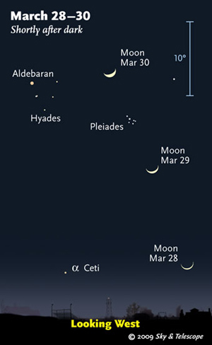 Watch the crescent Moon passing the Pleiades and Hyades at nightfall. This scene is drawn for the middle of North America. European observers: move each Moon symbol a quarter of the way toward the one for the previous date. The blue 10° scale is about the size of your fist held at arm's length (Illustration: Sky and Telescope)