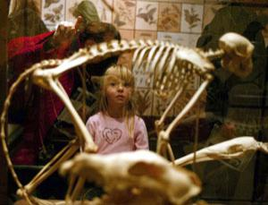 Child learns about evolution at a Darwin exhibition in the US