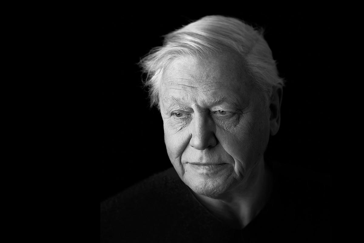 David-Attenborough