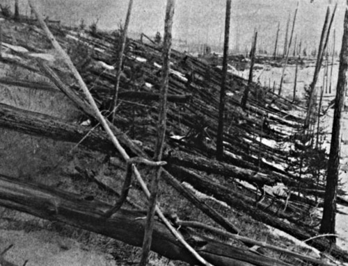 Trees were levelled in Siberia after what is thought to have been an impact from space in 1908