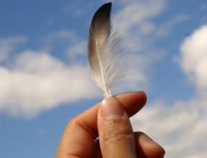 Could feathers be the answer for cheap hydrogen fuel cells?