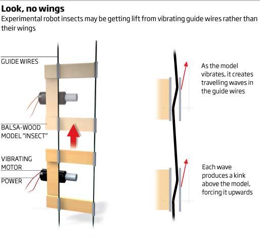 Look, no wings