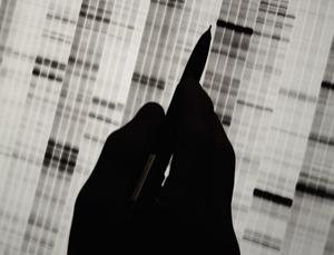 How DNA is analysed can affect any predictions made