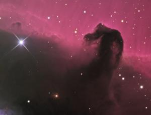 Horsehead nebula: see more images in our gallery