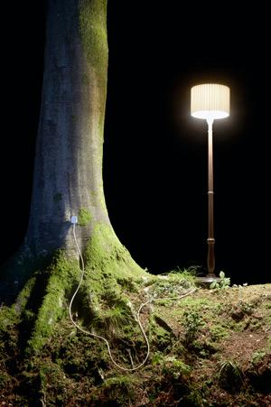 Plugging into tree power is not just a dream, although powering a lamp is not yet possible