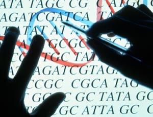 Zinc 'Fingers' could be used to cut, insert and repair DNA sequences