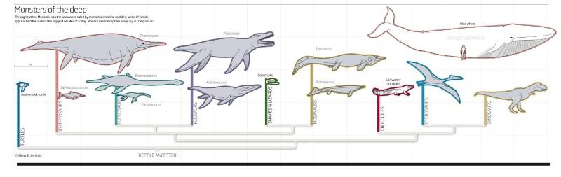 Monsters of the deep (Nigel Hawtin/New Scientist)