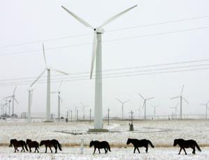 China's Huitengxile Wind Power Plant can generate up to 100,000 kilowatts of clean energy