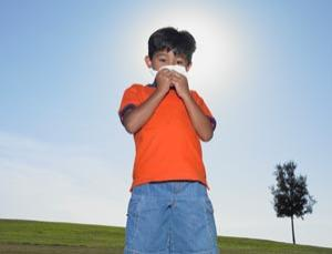 A step closer to understanding the photic sneezer, but what about disease genes?