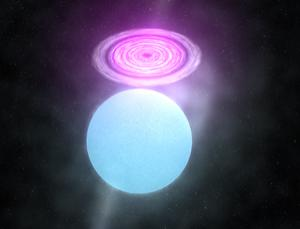 Material stolen from a young star (blue) forms a disc (red) around a black hole or neutron star in this illustration of the system Cygnus X-3. Strong flares occasionally erupt from this disc (Illustration: Walter Feimer/NASA Goddard Space Flight Center)