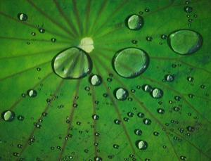 Water-repellant, like a solar cell