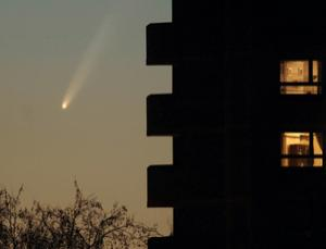 Comet strikes are rare on Earth, allowing life to flourish