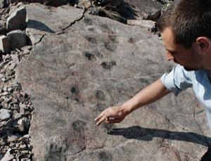 Footprints in 397-million-year-old mud