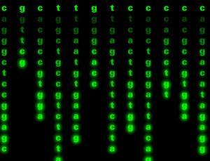 Writing genetic code 2.0