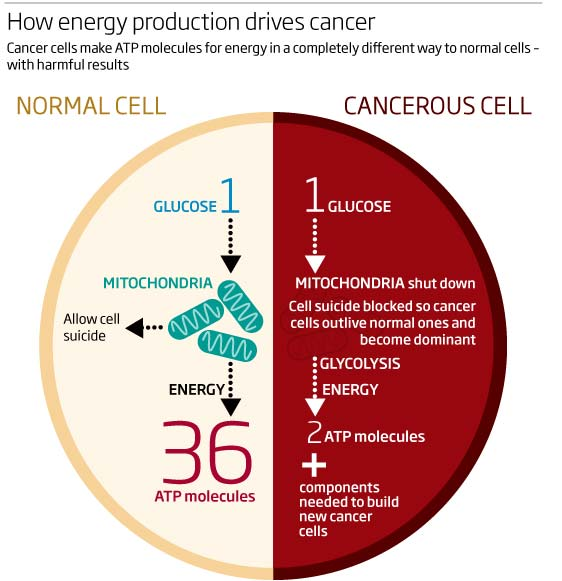 How energy production drives cancer