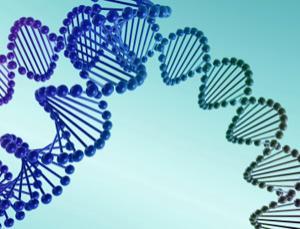 Entangled biology