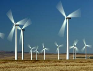 All power to the wind – it cuts your electricity bills